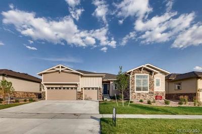 Aurora Single Family Home Active: 23160 East Del Norte Circle