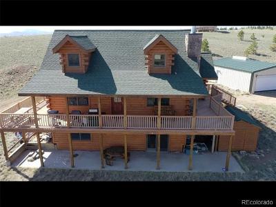 Hartsel Single Family Home Active: 10219 Ranch Road