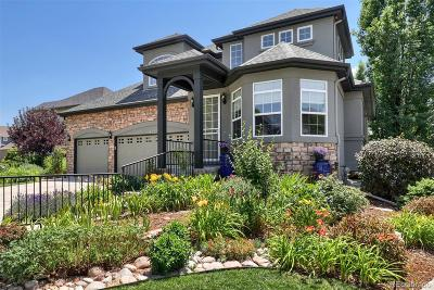 Denver Single Family Home Active: 1729 South Poplar Street