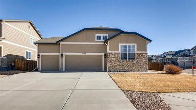 Monument Single Family Home Under Contract: 16505 Elk Valley Trail