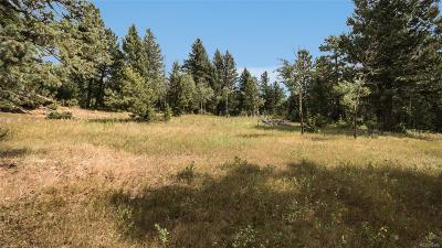 Evergreen Residential Lots & Land Sold: 8800 South Blue Creek Road