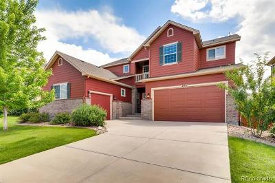 Castle Rock Single Family Home Active: 2611 Cache Creek Court