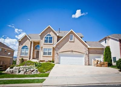 Colorado Springs Single Family Home Active: 1232 Castle Hills Place