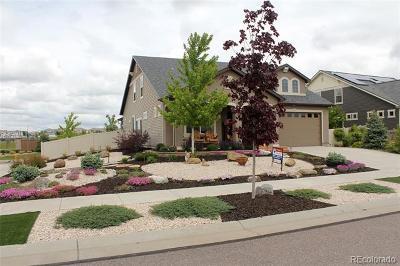 Denver Single Family Home Active: 19509 East 55th Avenue