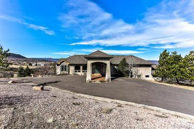 Castle Rock Single Family Home Active: 1640 Creedmoor Court