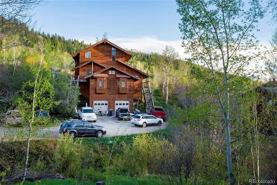 Steamboat Springs Single Family Home Active: 2570 Cortina Lane