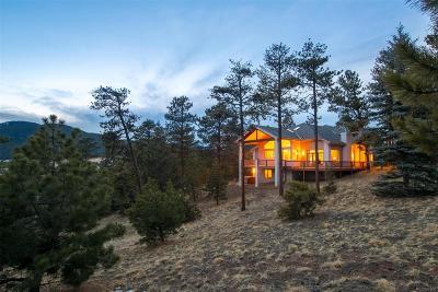 Evergreen Single Family Home Under Contract: 1424 Solitude Lane