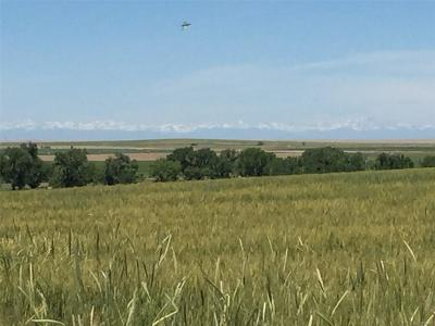 Adams County Residential Lots & Land Active: 12255 Pass Me By Road