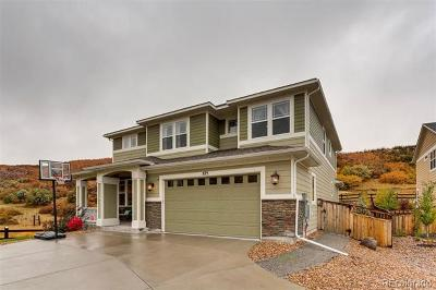 The Meadows Single Family Home Active: 875 Clear Sky Way