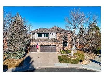 Littleton Single Family Home Active: 8901 Kittiwake Street