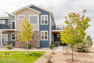 Longmont Single Family Home Active: 661 Robert Street