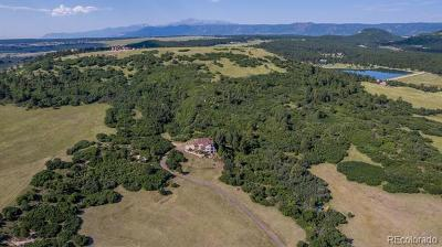 Larkspur CO Single Family Home Active: $1,230,000