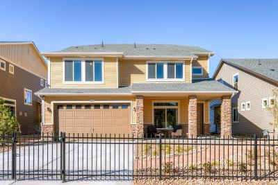 Denver Single Family Home Under Contract: 18151 East 47th Dr Drive