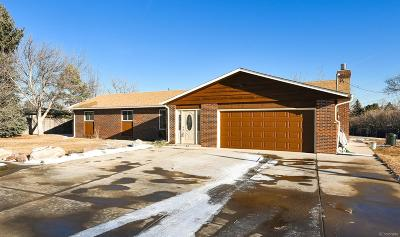 Longmont Single Family Home Active: 12904 Anhawa Avenue