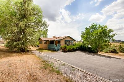 Castle Rock Single Family Home Active: 1151 Lake Gulch Road