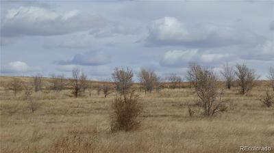 Arapahoe County Residential Lots & Land Active: Cr 217