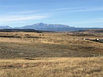Franktown Residential Lots & Land Active: 9203 South East Cherry Creek Road