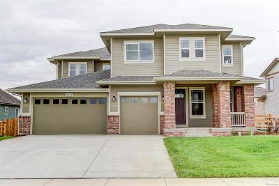 Castle Rock Single Family Home Active: 397 Sage Grouse Circle
