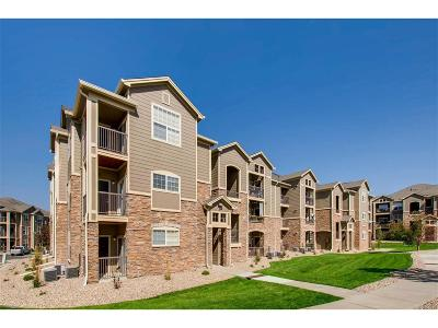 Erie Condo/Townhouse Under Contract: 1450 Blue Sky Way #12-104