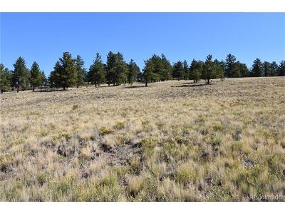 Park County Residential Lots & Land Active: 2122 Windmill Drive