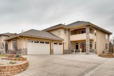 Louisville Single Family Home Active: 730 Bella Vista Drive