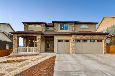 Castle Rock Single Family Home Active: 3985 Hourglass Avenue
