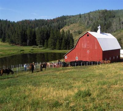 Steamboat Springs Single Family Home Active: 46600 County Road 129