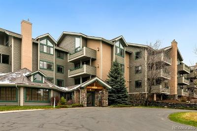 Evergreen Condo/Townhouse Active: 31719 Rocky Village Drive #215