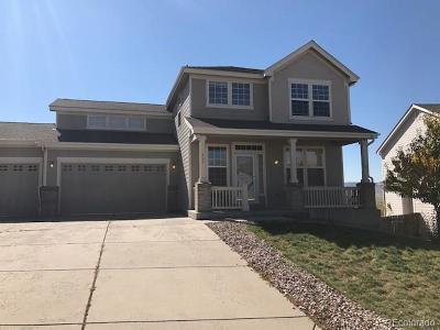 Castle Rock Single Family Home Active: 862 Eaglestone Drive