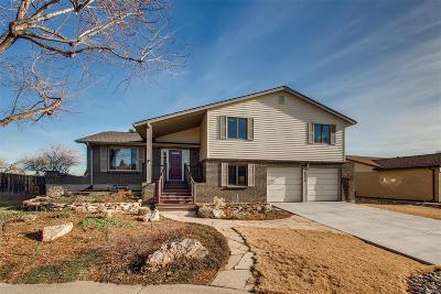 Arvada Single Family Home Under Contract: 8350 Webster Street