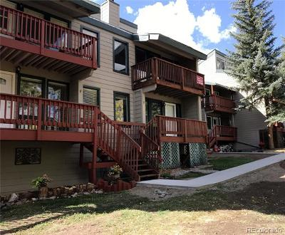 Oak Creek Condo/Townhouse Active: 23195 Schussmark Trail #E