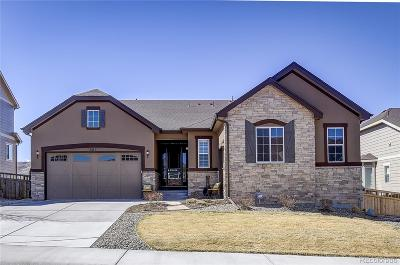 Castle Rock Single Family Home Active: 6115 Hoofbeat Place