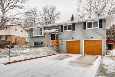 Denver Single Family Home Active: 2742 South Quay Way