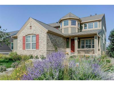 Douglas County Single Family Home Active: 7055 Winter Ridge Lane