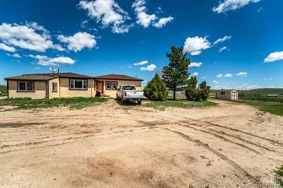 Calhan Single Family Home Active: 29345 Paint Mine Road