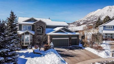 Castle Rock Single Family Home Under Contract: 1626 Thatch Circle