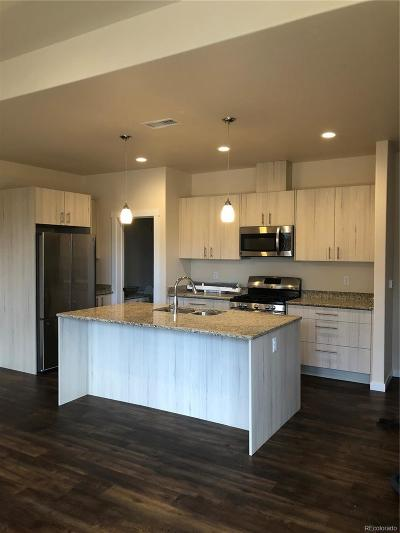 Salida Condo/Townhouse Under Contract: 728 Oak Street #H