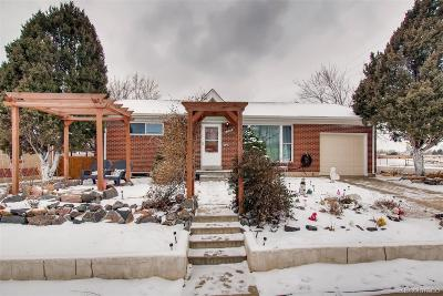 Northglenn Single Family Home Active: 1224 Elmer Drive