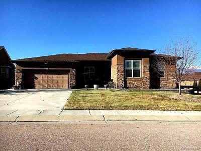 Colorado Springs Single Family Home Under Contract: 5194 Barnstormers Avenue