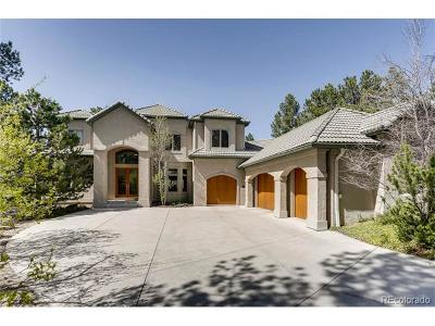 Castle Rock Single Family Home Active: 154 Equinox Drive