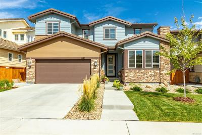 Parker Single Family Home Active: 14415 Big Stone Drive