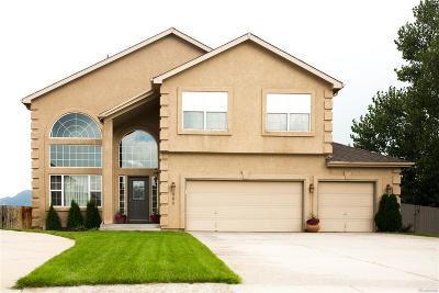 Colorado Springs Single Family Home Active: 389 Sedona Drive