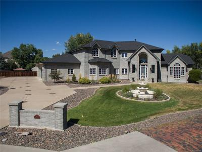 Wheat Ridge Single Family Home Under Contract: 3875 Pierson Court