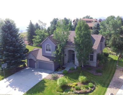 Littleton Single Family Home Active: 6 Meadow Rose Lane