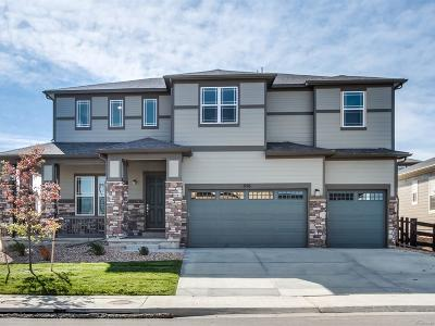 Lafayette Single Family Home Active: 656 Rock Ridge Drive