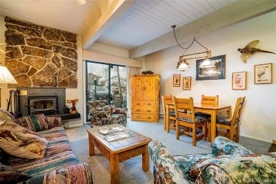 Steamboat Springs CO Condo/Townhouse Active: $260,000