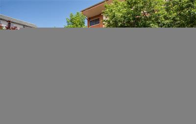 Denver Condo/Townhouse Active: 20 South Logan Street #104
