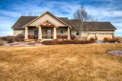 Fort Collins Single Family Home Active: 416 Hawks Nest Way