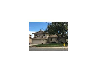 Arvada Single Family Home Active: 7310 Teller Street