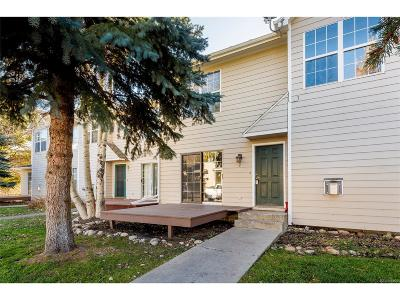Steamboat Springs CO Condo/Townhouse Under Contract: $299,900